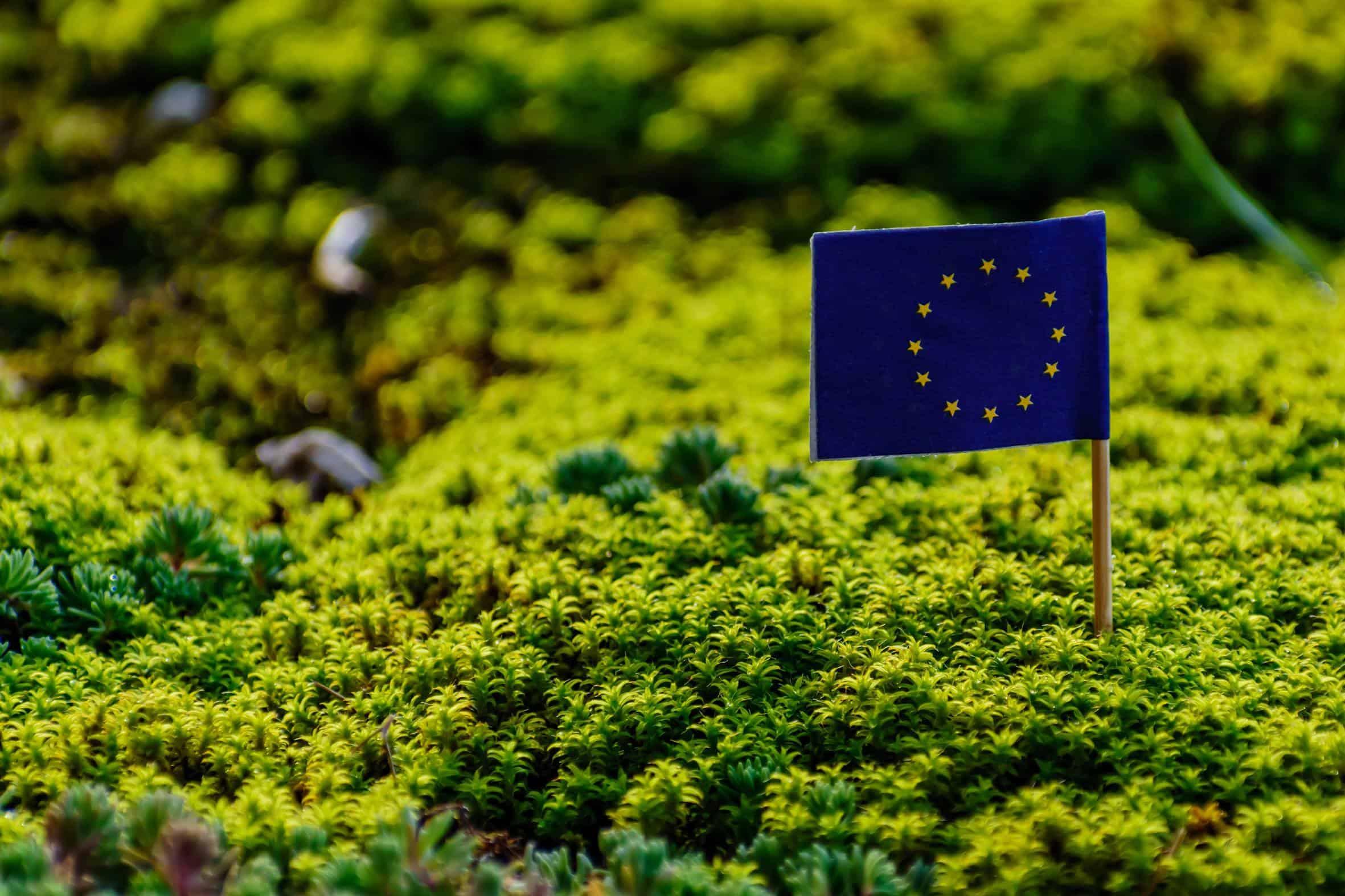 EU flag i grønt mos